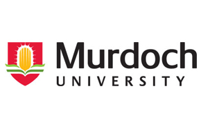 Murdoch University, Dubai Campus